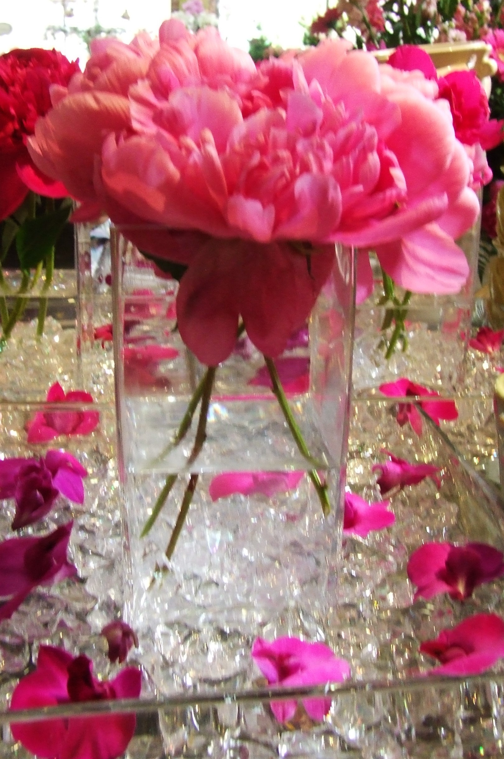 Pink red peony flowers for wedding ceremony flowers and - Flowers for table decorations ...