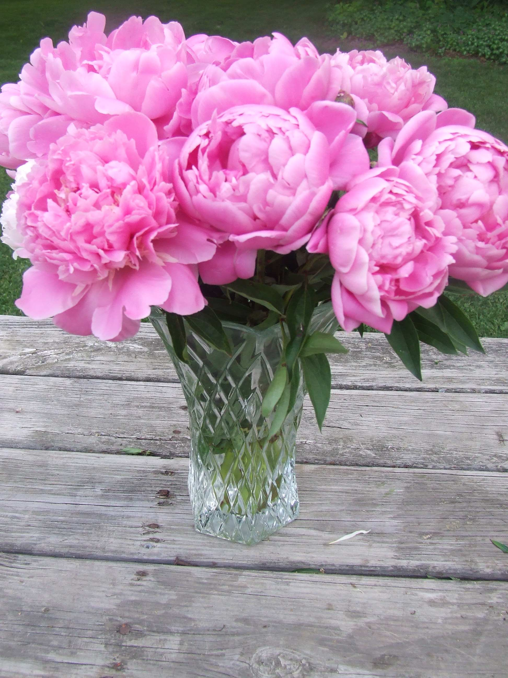 pink peonies wedding flowers