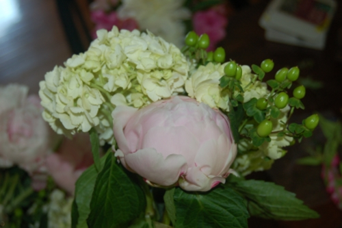 above the brides bouquet of light pink peonies and green hydrangea looks stunning the peonies are sarah bernhardt pink peonies